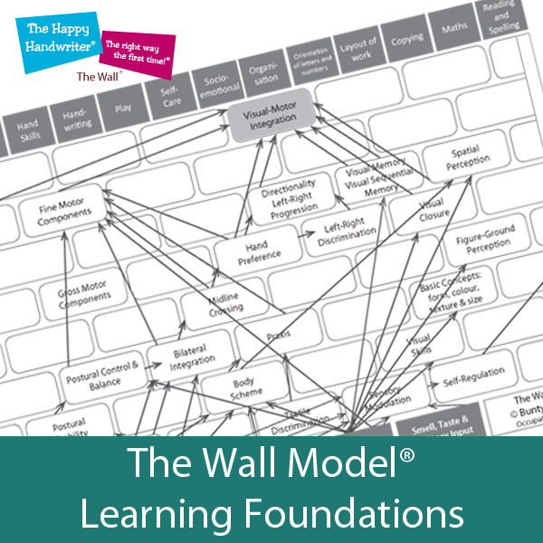 The Wall Model of occupational performance for analysing the sensory-motor and visual perceptual foundations for learning.